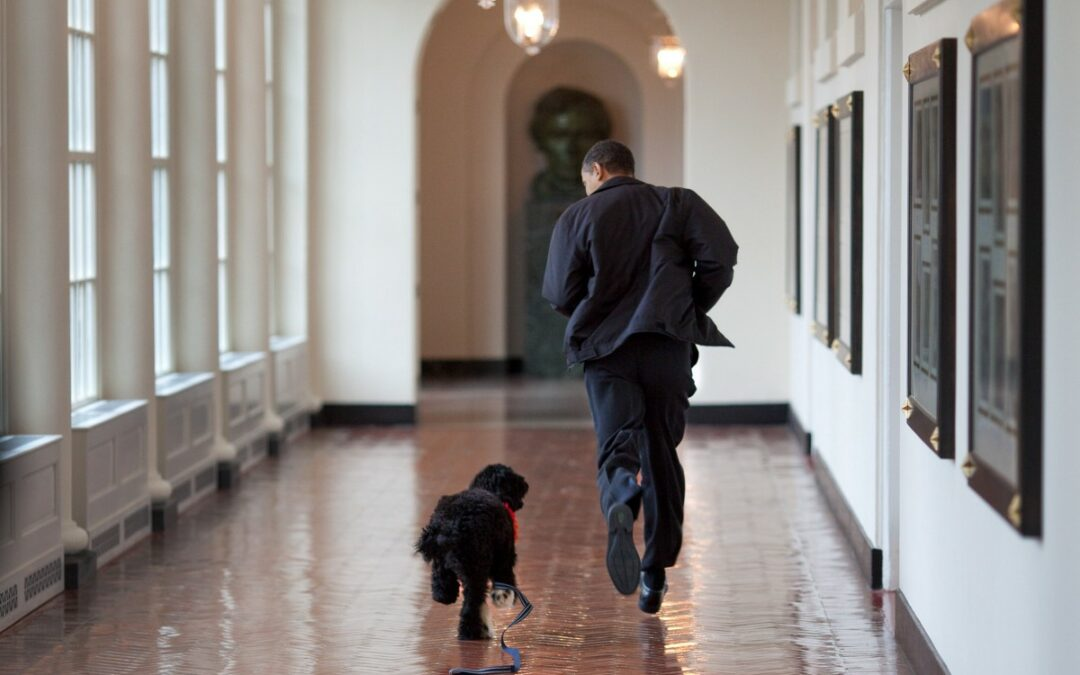 Five Photography Tips from Pete Souza